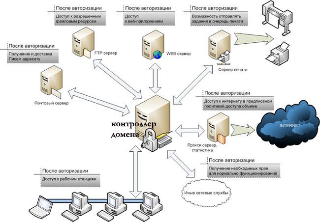 домен в сети